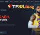 Hướng dẫn người mới chơi đặt cược tại Thể thao Saba TF88