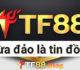 TF88 lừa đảo? Bóc phốt nuốt tiền người chơi của nhà cái TF88